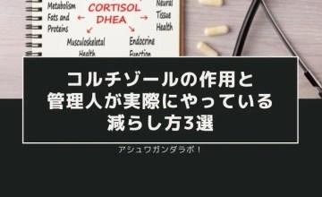 コルチゾールの作用と、管理人が実際にやっている減らし方3選