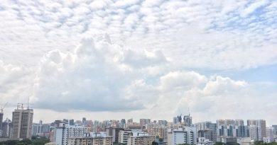 シンガポールDPで働くつもりだった元駐在妻、現ワーママの、東京都内の本帰国&保活レポート その1 住まい探し編
