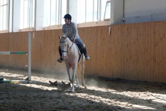 A rider on horseback in a dirt-floored building