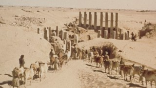 Image of Wendell Phillips' team begins excavation at a peristyle hall in Marib, present - day Yemen. Courtesy American Foundation for the Study of Man.