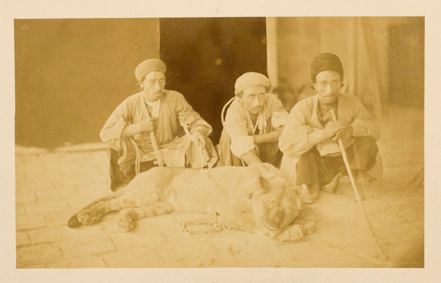 Sevruguin, Antoin,; b&w ; 20.9 cm. x 12.7 cm.; Stephen Arpee Collection of Sevruguin Photographs. Freer Gallery of Art and Arthur M. Sackler Gallery Archives. Smithsonian Institution, Washington D.C., 2011.