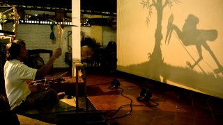 A puppeteer with a bird puppet, projecting the silhouette of a bird and a tree onto a screen.