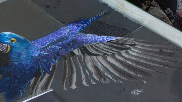 blue bird in embroidery