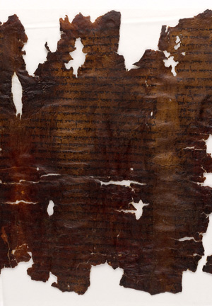 Shreds of dark brown leather with printing in black ink.
