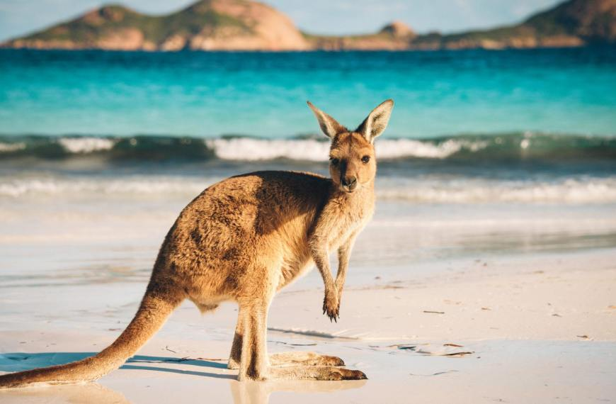 Asia is the future of Australia's inbound tourism, not just China