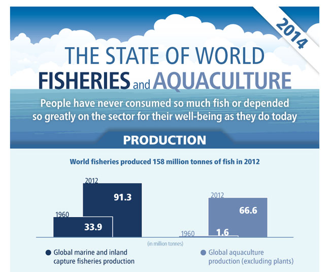 New edition of faos state of world fisheries and aquaculture state of world fisheries and aquaculture sciox Gallery