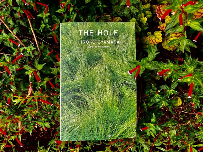 BOOK REVIEW: THE HOLE BY HIROKO OYAMADA