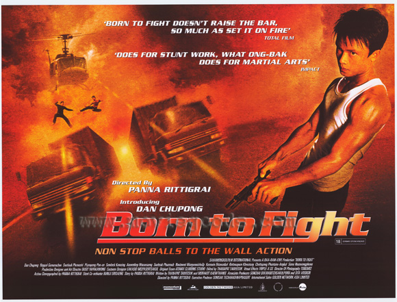 born to fight poster