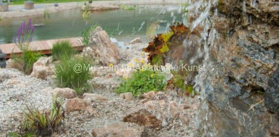 ZEN Wasserfall