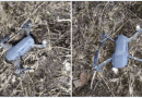 Pakistan Army claims to shoot down 'spying' Indian quadcopter along LoC