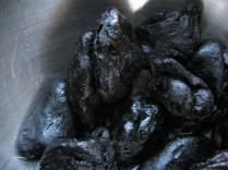 closeup of the oily kluwak