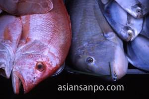 ベトナム ホーチミン・ベンタイン市場・魚