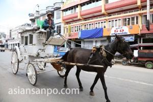 ミャンマー ピンウーリンの馬車