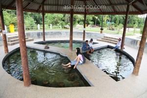 ミャンマー コータウン 温泉