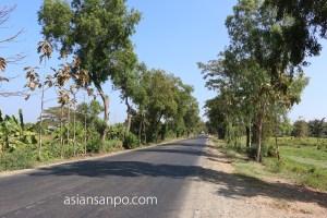 ミャンマー パテイン-バゴー