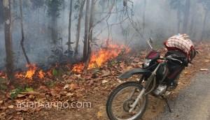 ミャンマー シュエボーーカレイワ 野焼き
