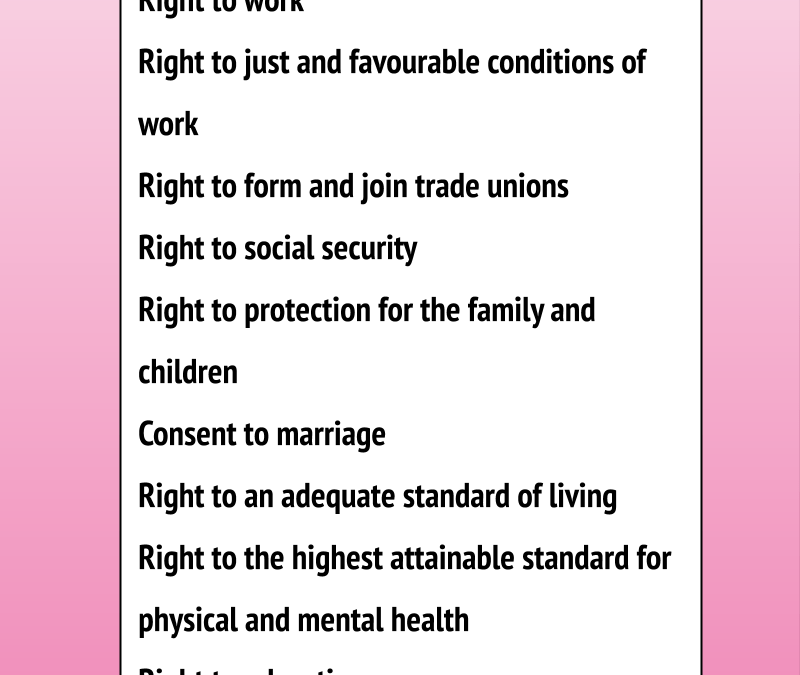 KNOW YOUR RIGHTS// Delving into economic, social, and cultural rights