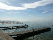 Jezioro Albufera