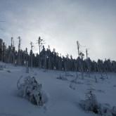 Zima wBeskidach, szlak naLipowską