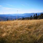 kolorowe trway, jesienne łąki, Beskidy, okolice Lipowskiej iRysianki