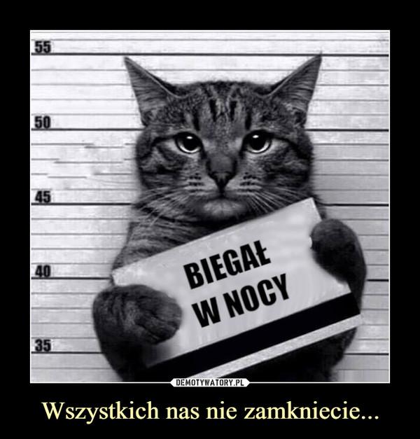 Kot, demotywatory, wszystkich nas niezłapiecie