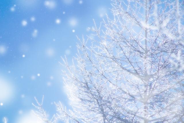 冬の足汗の原因