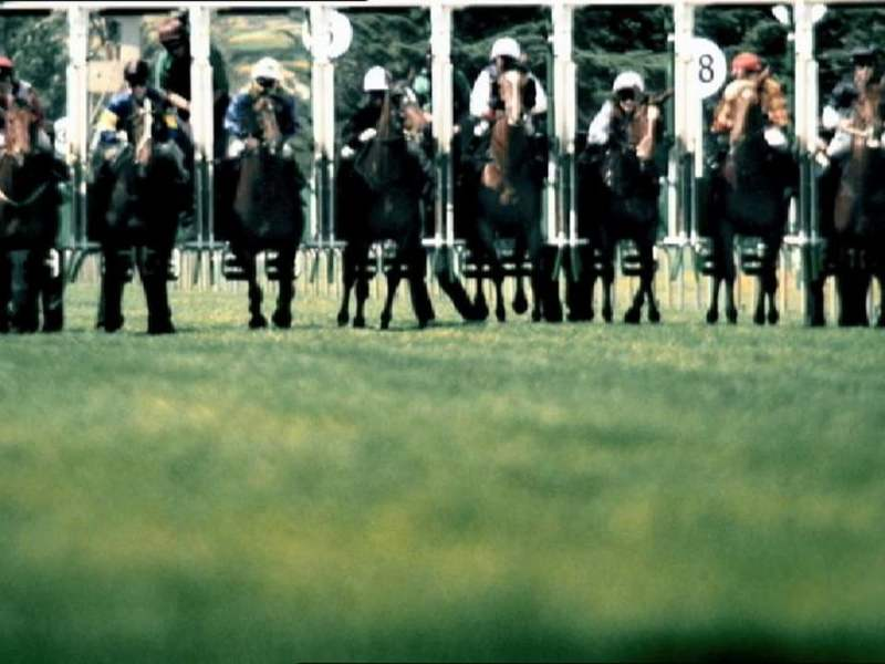 Punters paradise: The Melbourne Cup stops a nation every year, but its drawing gamblers around the world. Photo: Vimeo