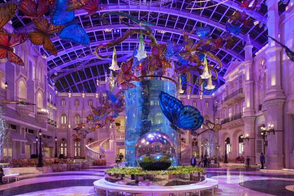 MGM Macau Butterfly Garden