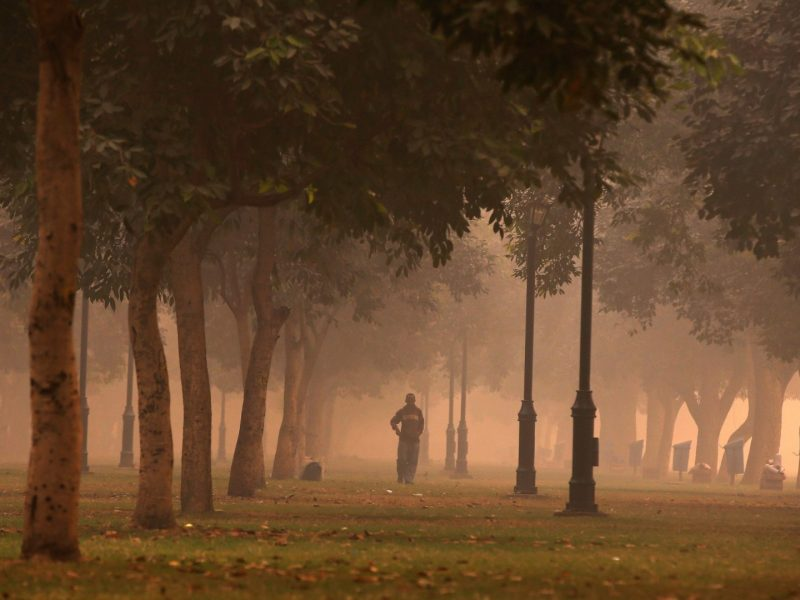 A man walks in a public park on a smoggy morning in New Delhi, India. Photo: Reuters: Adnan Abidi