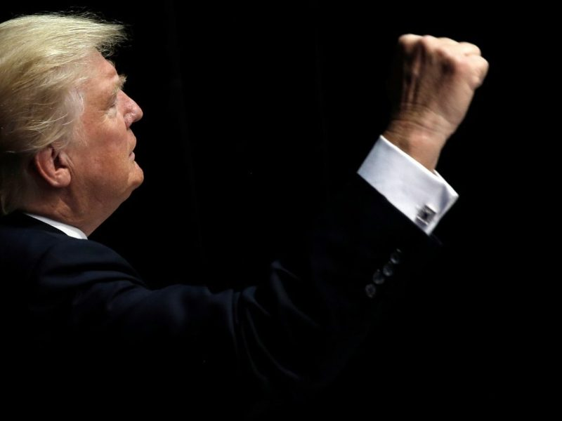 The cat who walked alone... Donald Trump's election was remarkable for the lack of support he sought -- or won -- from the Republican elite. In power he will find the one-man-band approach may not work so well. Photo: Reuters.