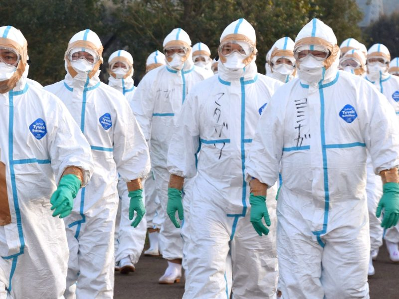 Quarantine officials in protective gears head to a poultry farm in Kawaminami, Miyazaki Prefecture, southwestern Japan to bury chickens culled after a highly virulent strain of bird flu was detected this week. Photo: Reuters