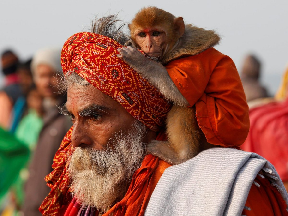 """A Sadhu or a Hindu holy man carrying his pet monkey walks after taking a dip at the confluence of the river Ganges and the Bay of Bengal on the occasion of """"Makar Sankranti"""" festival at Sagar Island, south of Kolkata, India, January 14, 2017. REUTERS/Rupak De Chowdhuri TPX IMAGES OF THE DAY"""