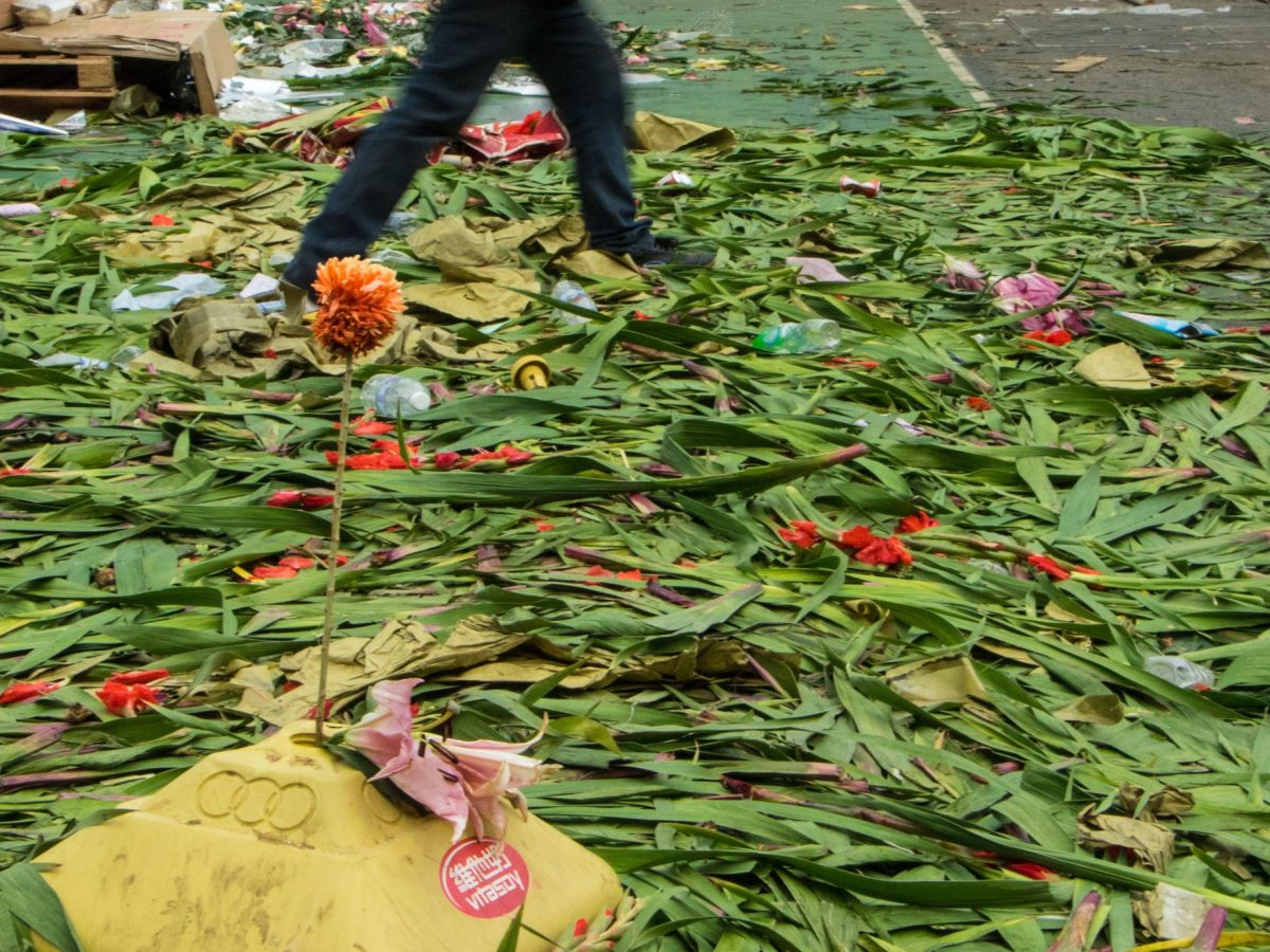 Surplus to requirements. New year flowers are dumped. Photo: Ya Leung