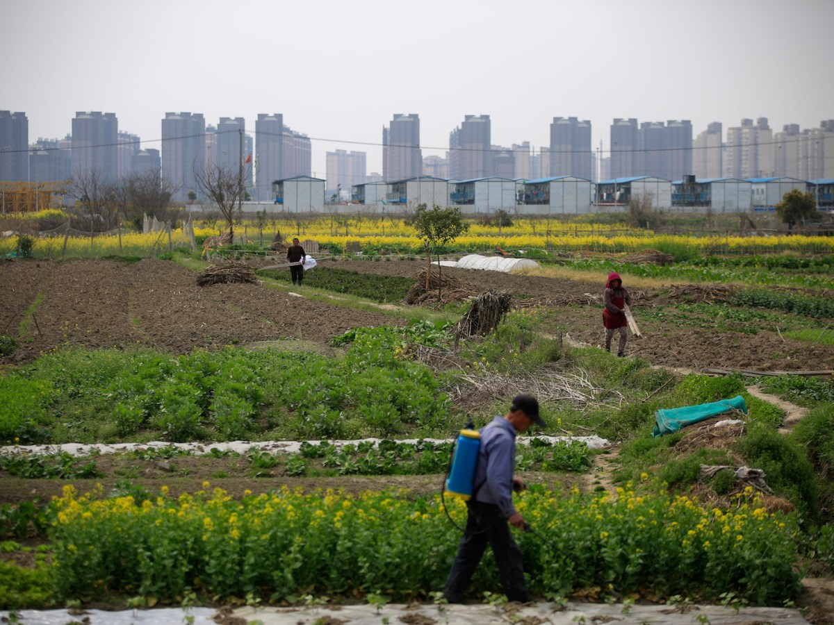 A farm in front of a construction site of new residential buildings in Shanghai, Rural and urban experiments in free enterprise can be said to be largely responsible for China's sustainable economic growth. Photo: Reuters/Aly Song