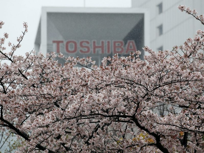 The logo of Toshiba Corp is seen behind cherry blossoms at the company's headquarters. Photo: Reuters/Toru Hanai
