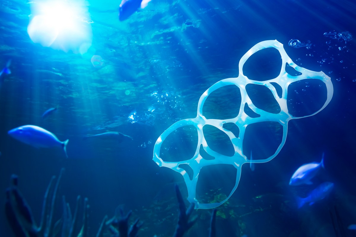 By 2050, there will be more plastic in the ocean than fish. Photo: iStock