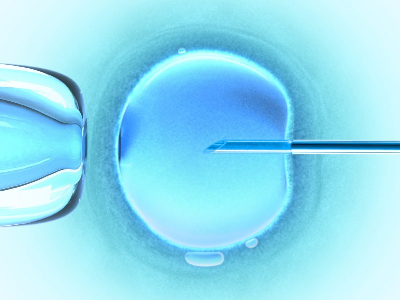 Mistakes have occurred with in vitro fertilization. Photo: iStock