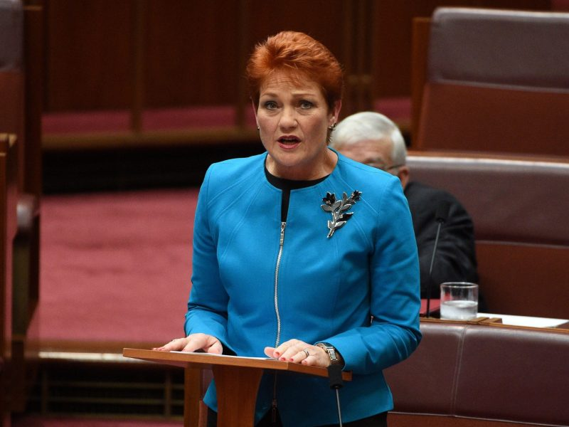 Australia's One Nation party leader Senator Pauline Hanson makes her maiden speech in the Senate at Parliament House in Canberra, Australia, September 14, 2016. AAP via Reuters/Mick Tsikas