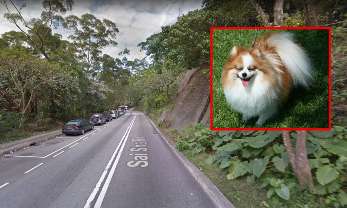 Shui Long Wo on Sai Sha Road in Sai Kung. Photos: Google Maps, Wikimedia Commons
