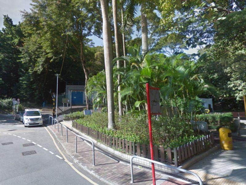 King's Park Hill, Kowloon. Photo: Google Maps