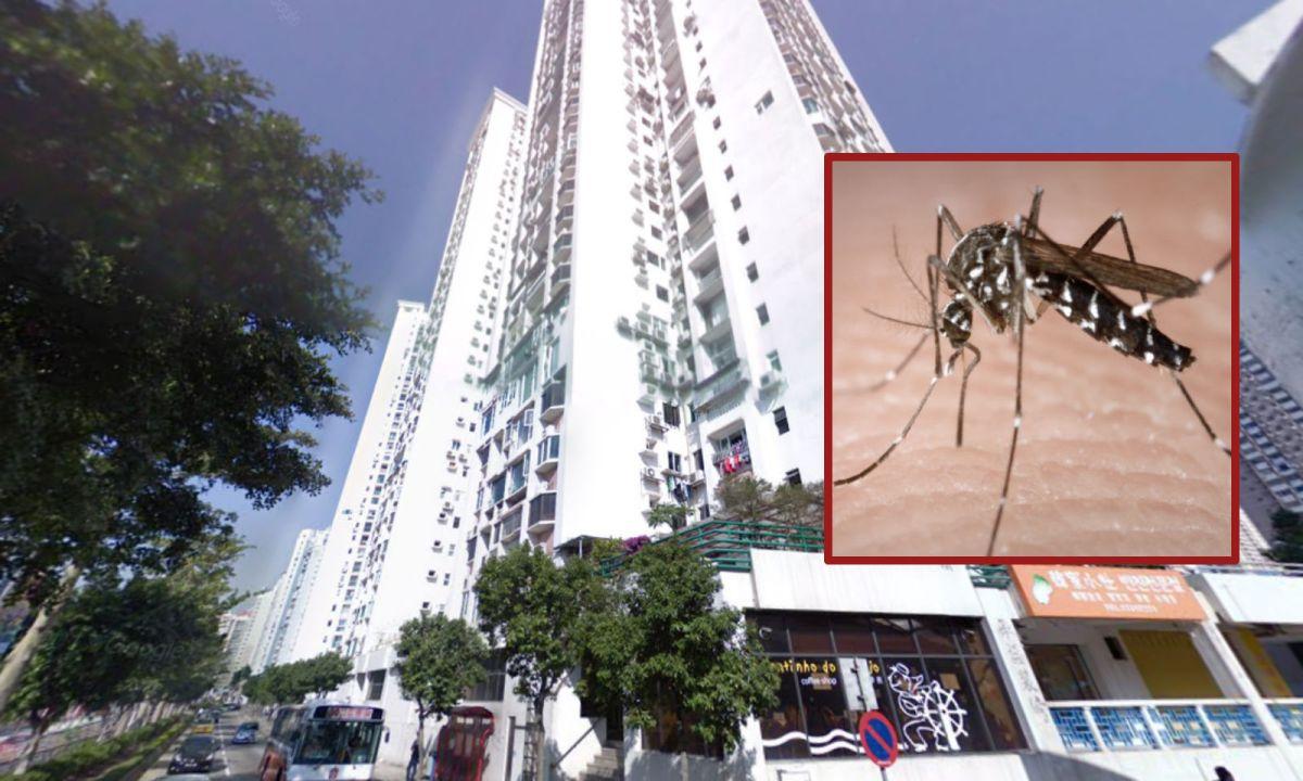 VA Pou Garden building in Taipa, Macau, where the maid works. Photo: Google Maps, Wikipedia Commons