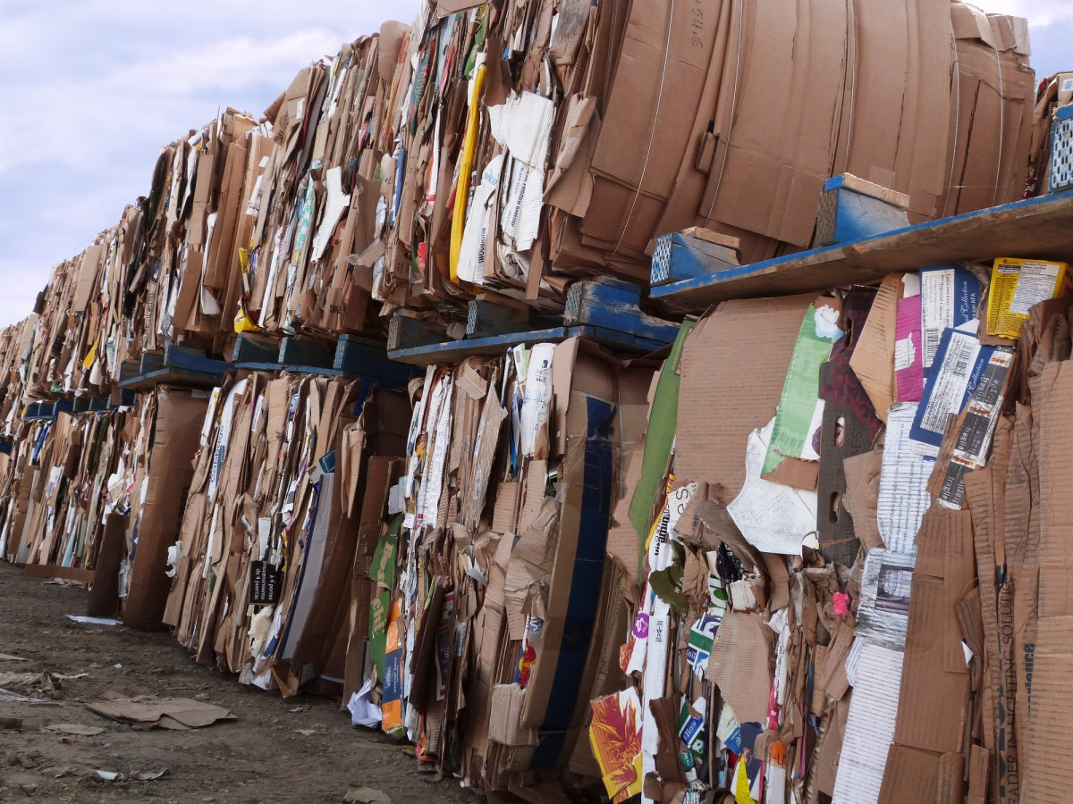 Stacks of cardboard ready for recycling. Photo: iStock