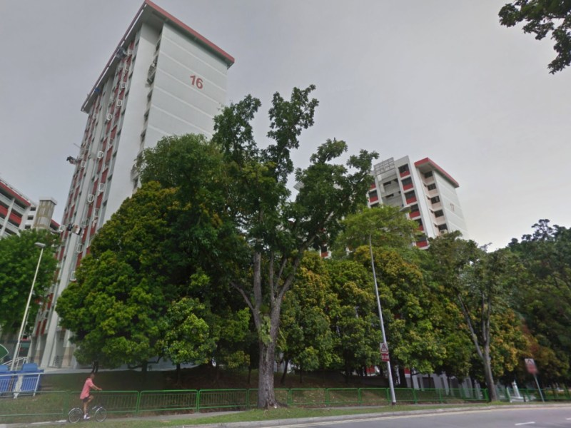 HDB blocks 16 and 17 in Marsiling Lane, Woodlands, Singapore. Photo: Google Maps