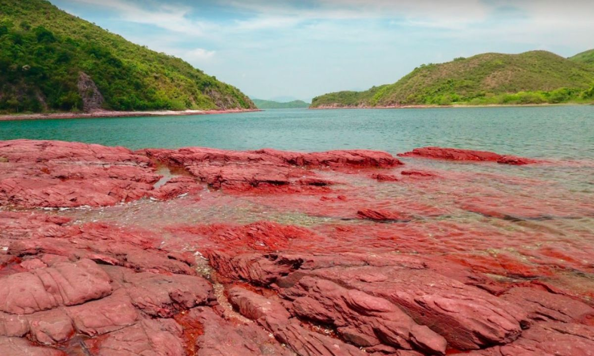 Hung Shek Mun, on the shore of Double Haven within Plover Cove Country Park, New Territories. Photo: Google Maps, Kevin Chiang