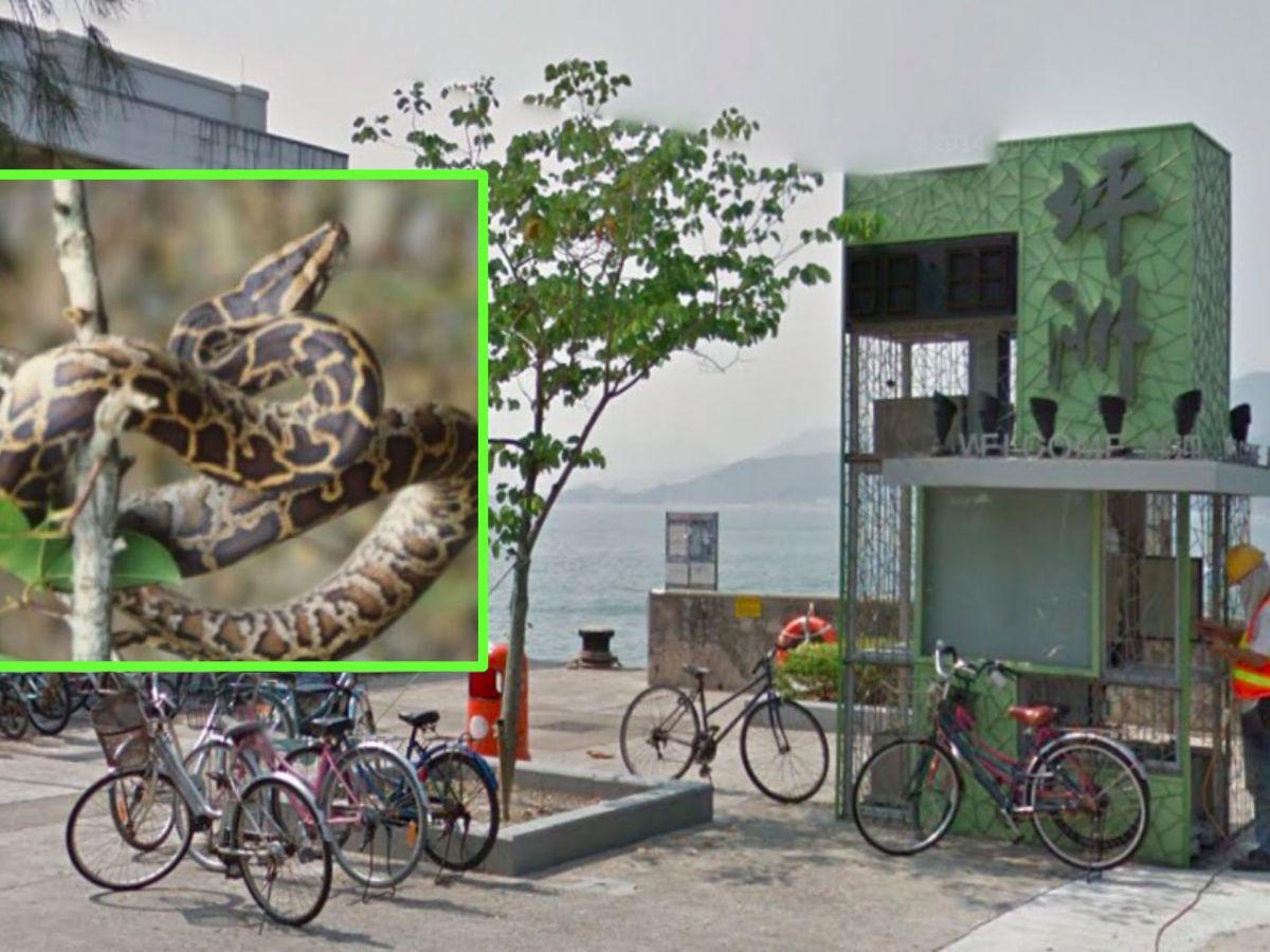 Peng Chau. Photos: Google Maps, Hong Kong Government