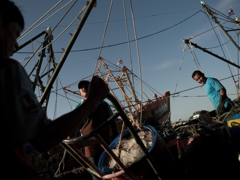 Migrant fishery workers at a port in Mahachai, on the outskirts of Bangkok in a June 30, 2015 file photo. Photo: AFP/ Nicolas Asfouri