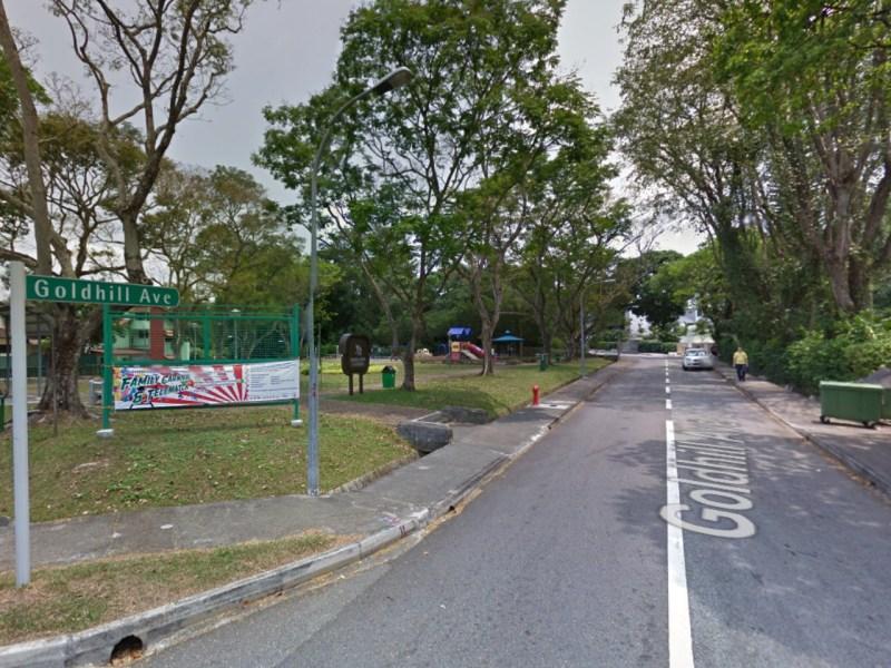 Goldhill Avenue in Singapore. Photo: Google Maps