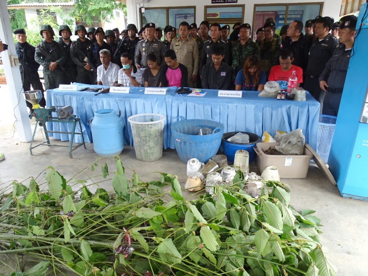 Thai police seized kratom leaves picked from 6,000 krathom trees planted near a house in southern Prachuab Khirikhan province in June, 2014. The stimulant is popular in southern Thailand and across much of Southeast Asia. Photo: AFP/Bangkok Post/Chaiwat Sardyaem