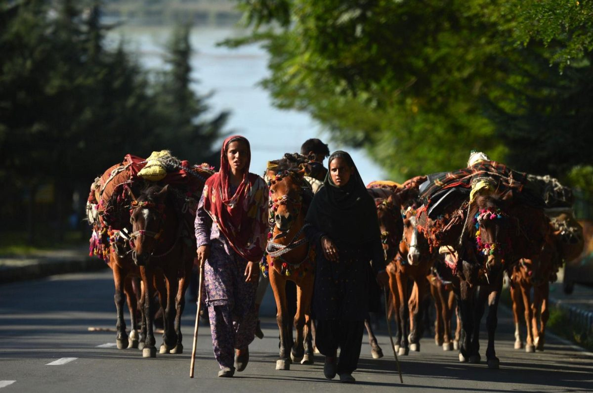 A nomadic family of women walks along the boulevard on the banks of Dal Lake in Srinagar in this file pic Photo: AFP/ Tauseef Mustafa