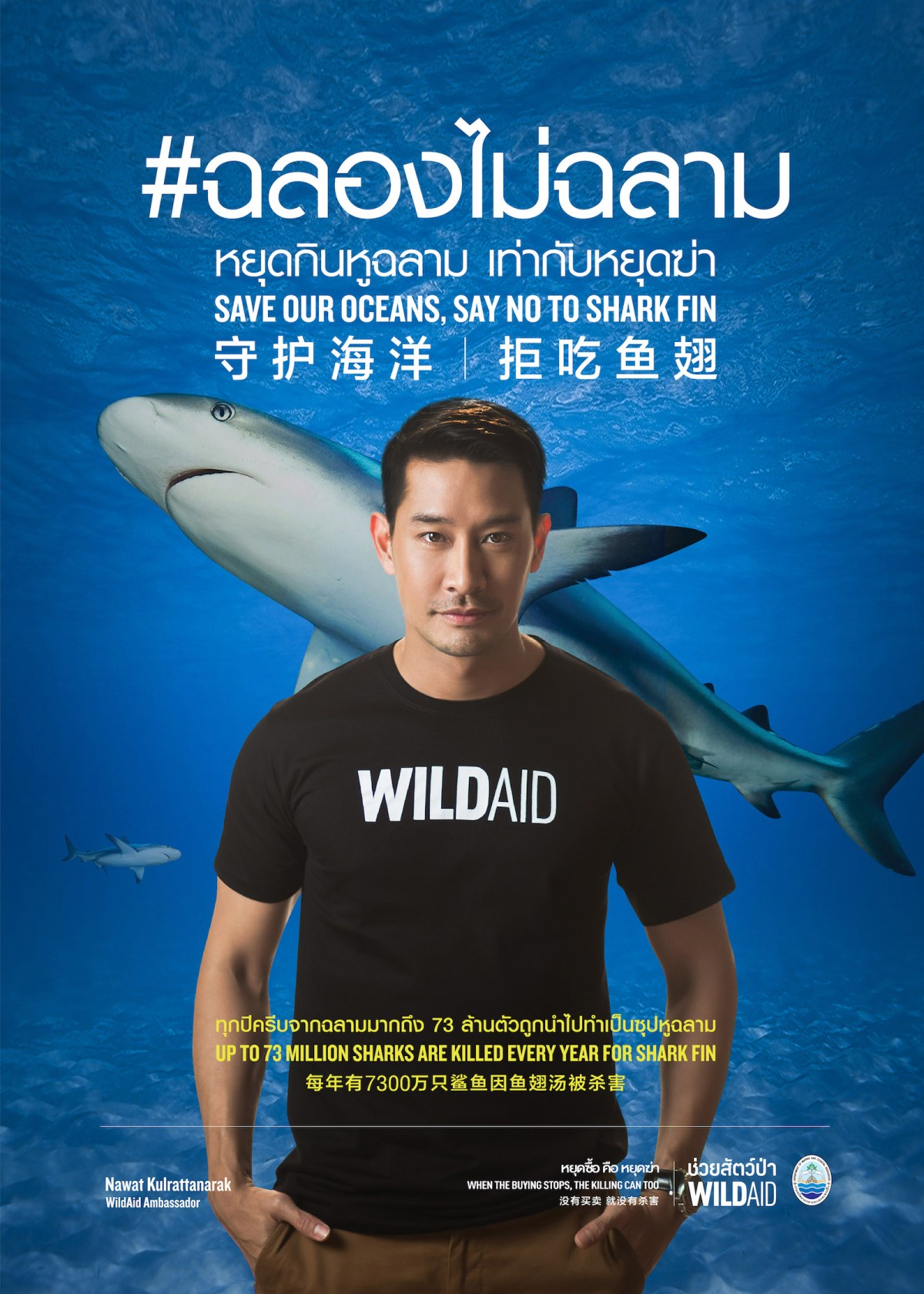Thai TV star Pong Nawat Kulrattanarak and the new campaign to save sharks. Photo: WildAid